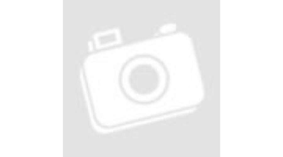 9d60c35723 Hivatalos Mercedes AMG Petronas rajongói termékek - Mercedes AMG ...